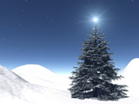 christmastreestar